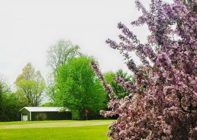 spring-at-diamond-lake-golf-course